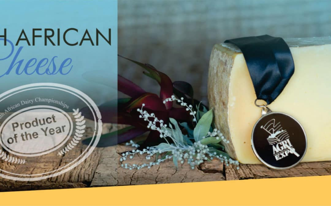 South African Cheese